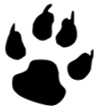 Favicon of https://www.leafcats.com