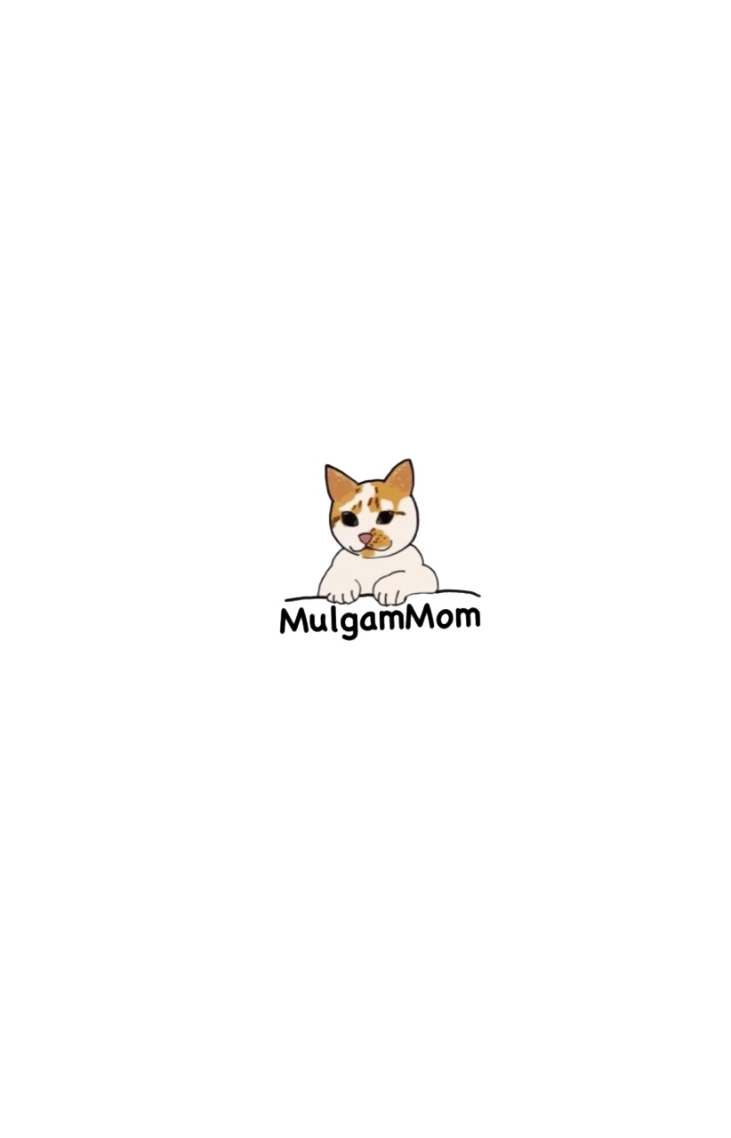 Favicon of https://mulgammom.tistory.com